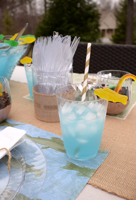 Living Rich On Lessliving Rich On Less: Backyard Fish Fry Party Ideas With Chinet® Cut Crystal