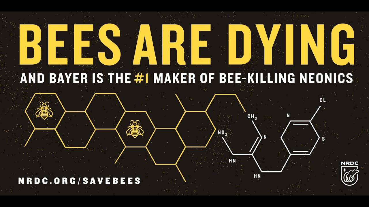 Bayer is suing *Europe* for saving the bees - SumOfUs